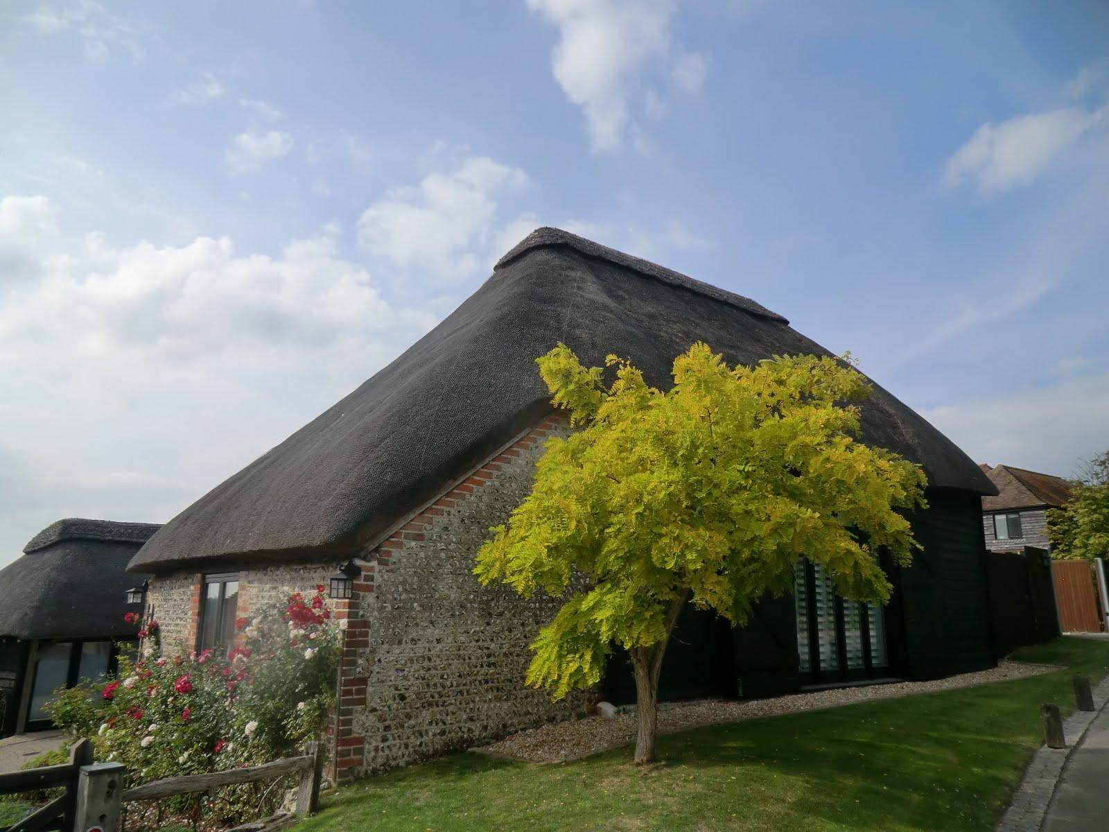 CIMG4748 Thatched Cottage, Wepham