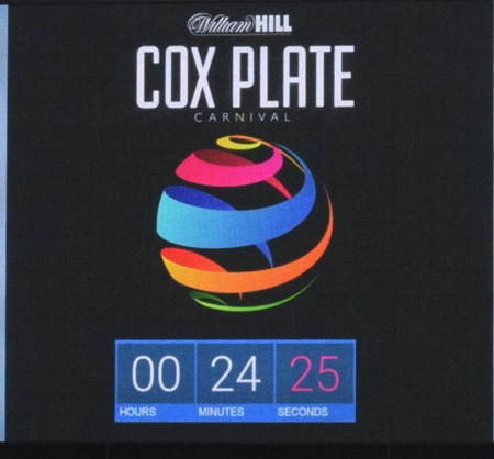cox plate_countdown 1