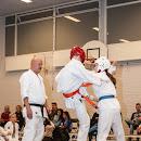 KarateGoes_0214.jpg