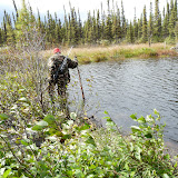 Crossing a beaver dam