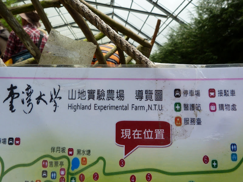 TAIWAN Dans la region de Wushe,au centre - P1140156.JPG