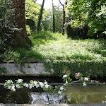 Maison Jean Cocteau : vue sur les douves et le parc du Château de Milly-la-Forêt