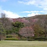 2014 Japan - Dag 8 - jordi-DSC_0634.JPG