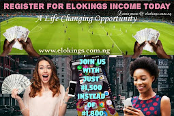 How To Make Money On Elokings Income Program