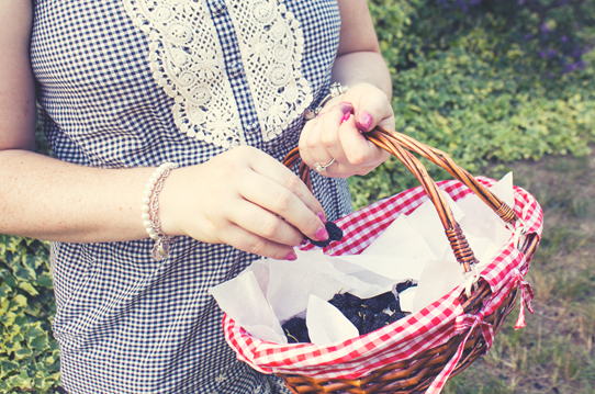 Berry picking and a lacey playsuit | Lavender & Twill