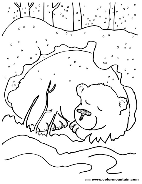 Coloring Pages Of Animals That Hibernate  Images About Hibernation  On Pinterest