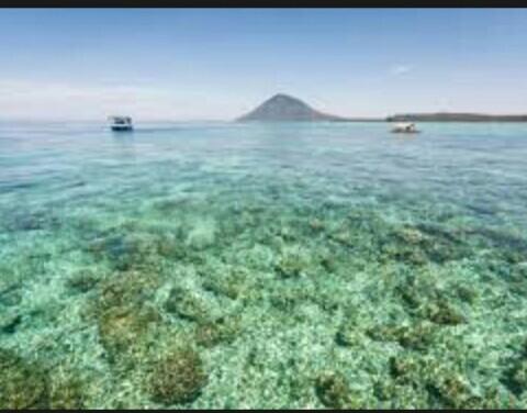 tempat wisata indonesia keren bunaken