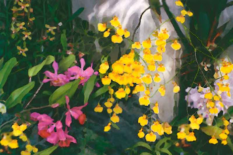 """The """"Wild Orchids"""" piece from the """"2001"""" collection"""