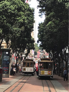 To trikker møtes i en gate med tette trær på begge sider.