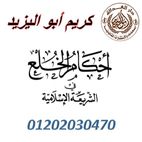 اشهر محامي خلع   (كريم ابو اليزيد)   01202030470  99