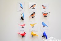 FREE Safari Toob Backyard Birds Matching Cards
