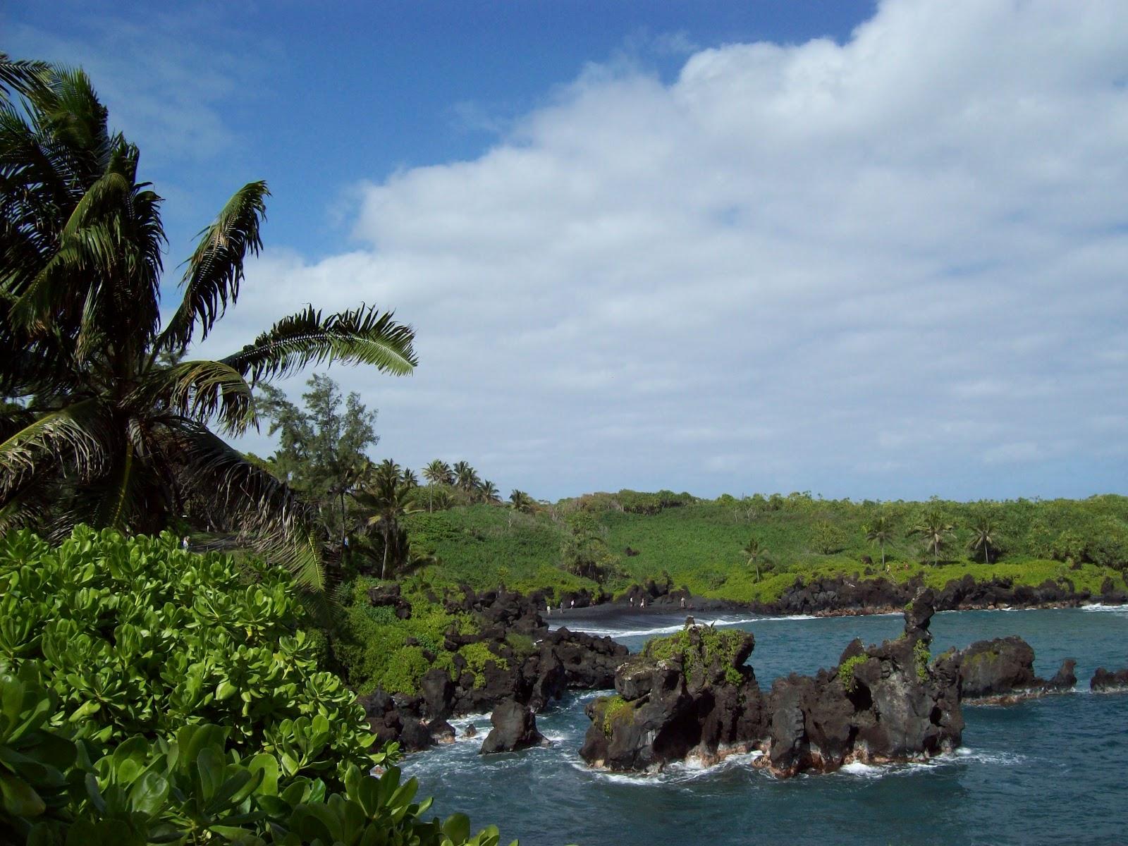 Hawaii Day 5 - 100_7455.JPG