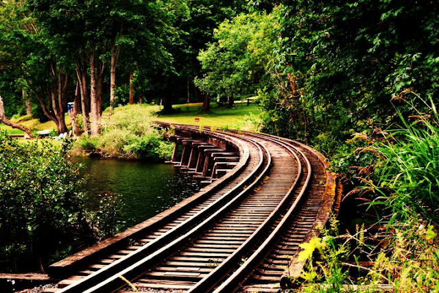 Tracks on Lake Whatcom / Credit: Connor Herman
