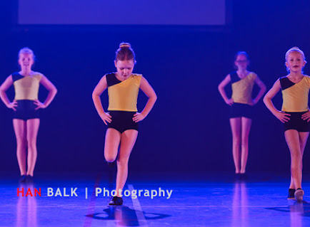 Han Balk Voorster Dansdag 2016-3852.jpg