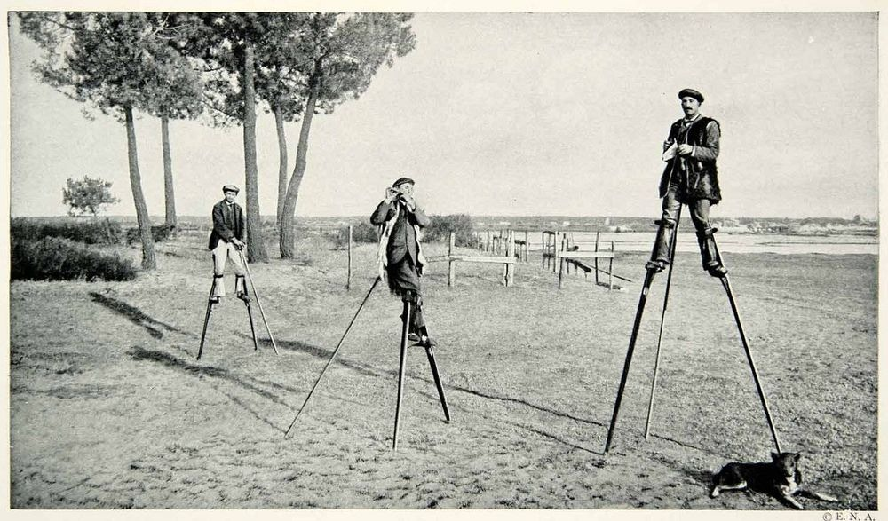 The Stilt Walking Shepherds of Landes