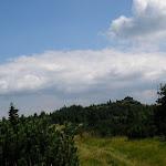 Volovec Skalisko (7) (800x600).jpg
