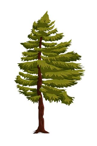 如何繪製樹