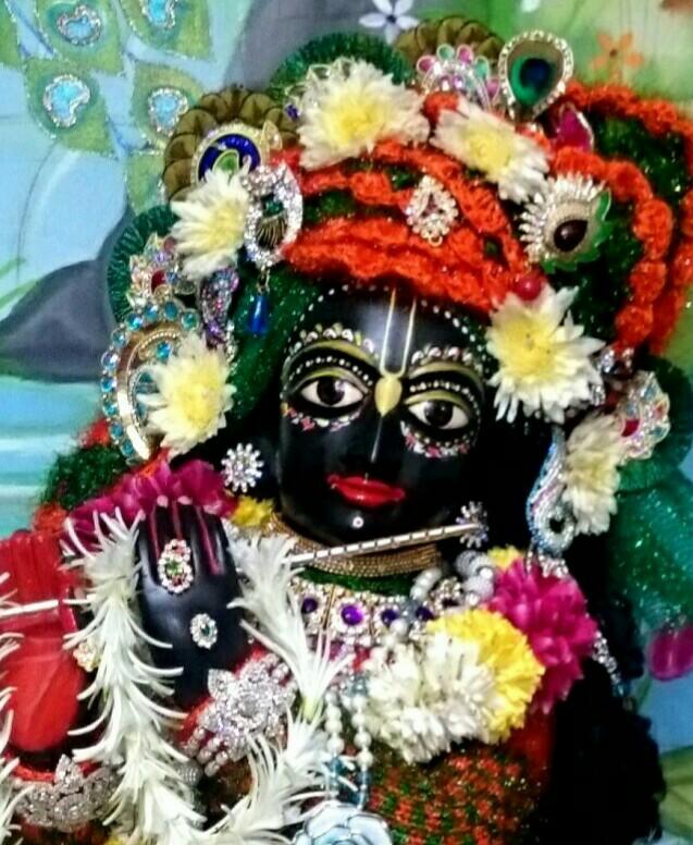 ISKCON Bhusawal Deity Darshan 23 Jan 2016 (12)