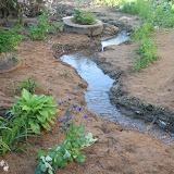 Первый водосток - подсыпан песок, высажены многолетники