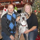 Dynamite Danes Family Album #3 - Christmas%2BPicture.jpg