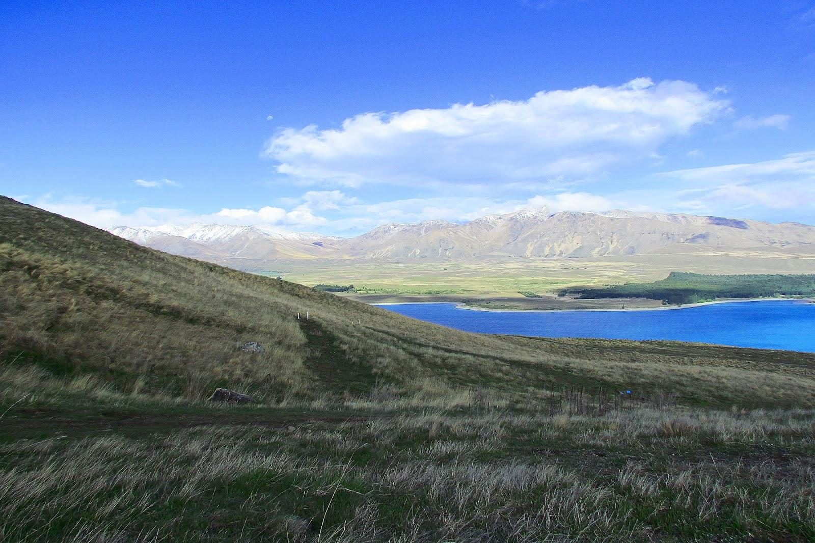 Lake Tekepo 2.jpg