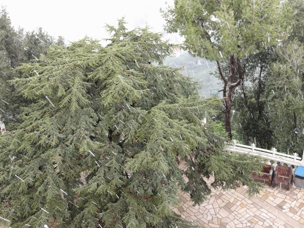 Liban, 19.02.2015 - DSC09302.JPG