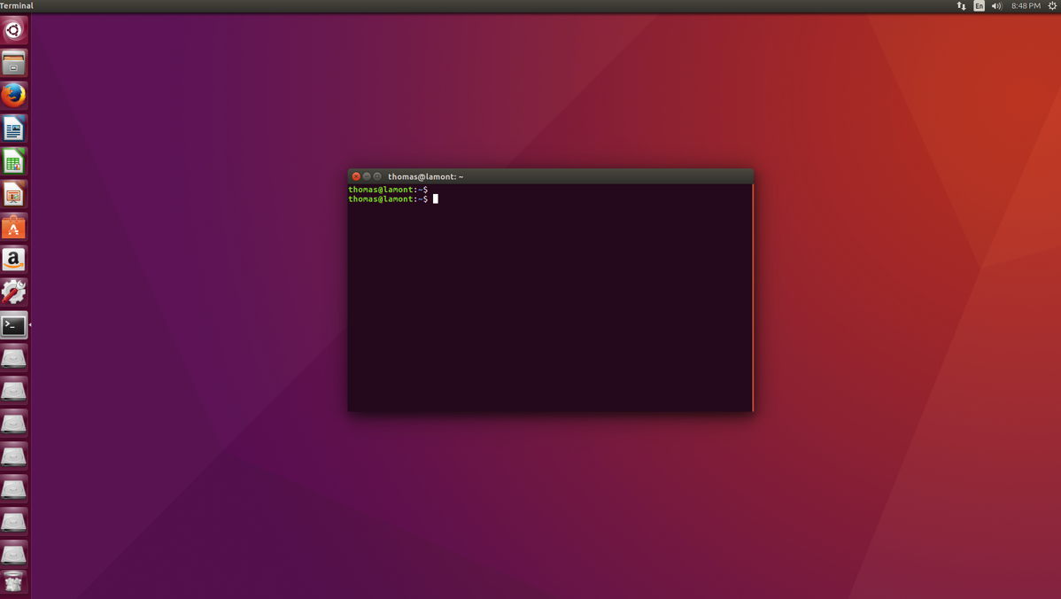 The Ubuntu Linux terminal ready for editing