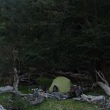 camping nel bosco
