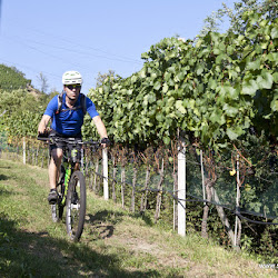 Biobauer Rielinger Tour 14.09.16-5596.jpg