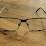 Daniel Brolund's profile photo