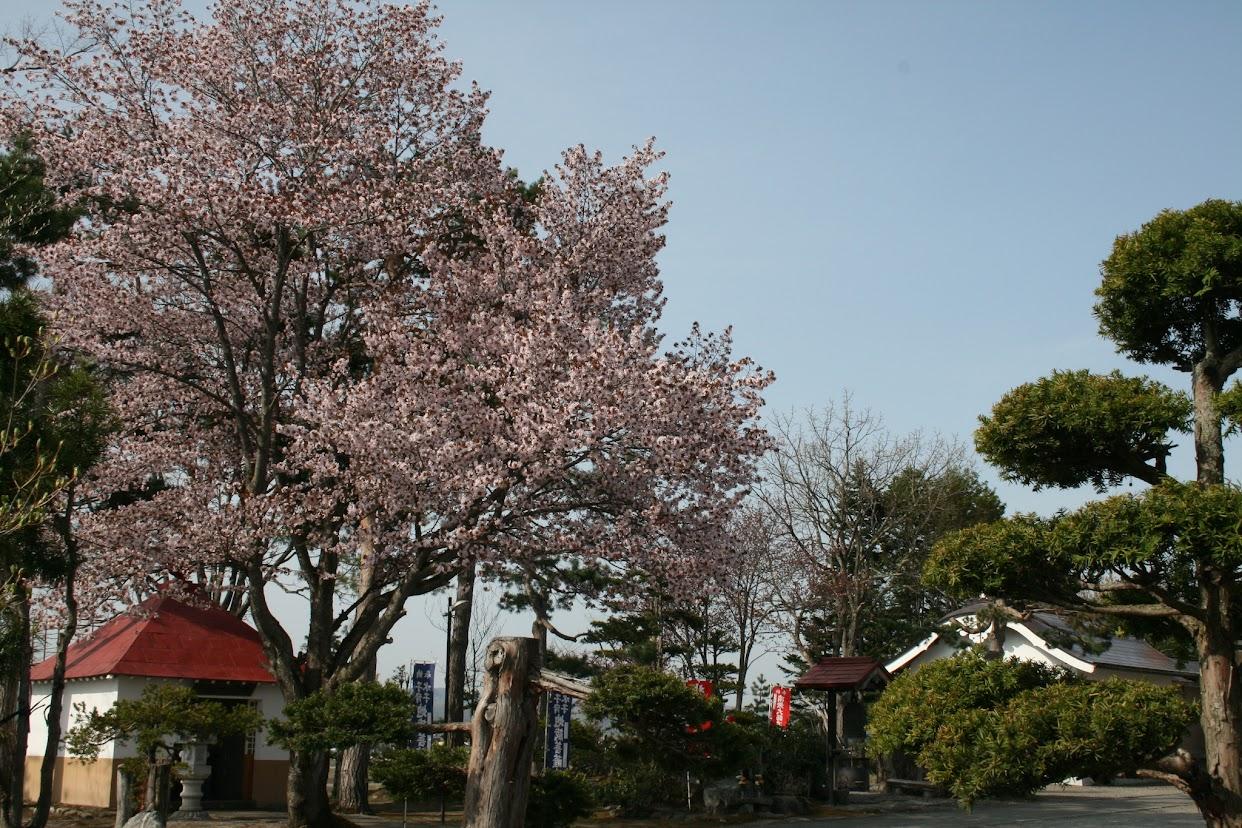 弘徳寺(1)