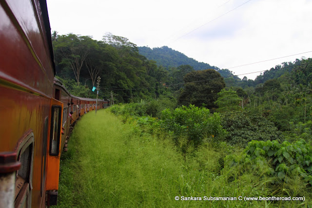 Sri Lanka's Heritage Train chugs its way to the top and through evergreen tropical forests