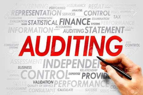 Important Auditing Terms and Topics - Free BCom Notes