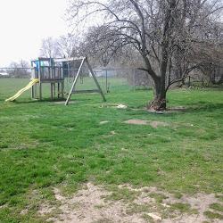 Birchard Park's profile photo
