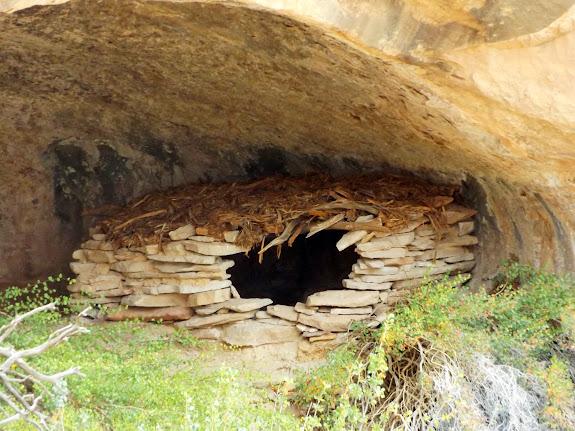 Cedar Bark Ruin