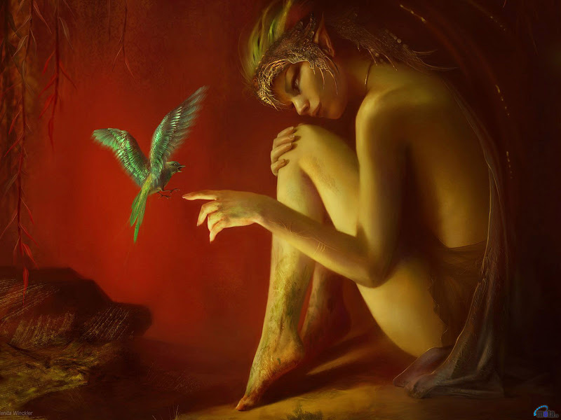 Magic Of Young Angel, Magic Beauties 5
