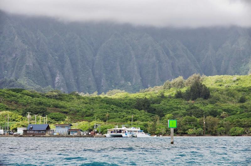 06-18-13 Waikiki, Coconut Island, Kaneohe Bay - IMGP7022.JPG