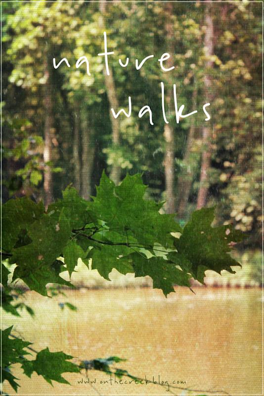 Nature Walks | On The Creek Blog