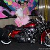 Alkmaar Sweet Sixty AZ Stadion Rock & Roll dansshow (12).JPG