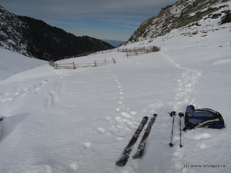 2016.01.03 - Fagaras - Schi pe Valea Doamnei