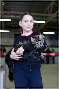 cats-show-24-03-2012-fife-spb-www.coonplanet.ru-077.jpg