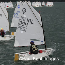 OPTIMIST MUNSTERS SUNDAY (Paul Keal Images)
