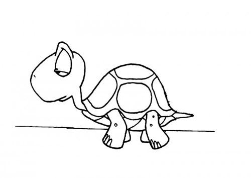 tortuga para colorear (5)