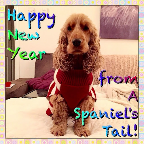 A Spaniel's Tail Happy New Year