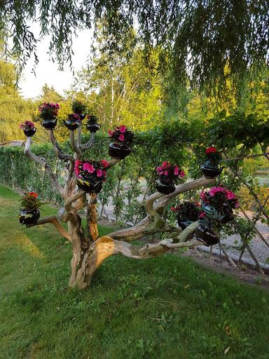Teapot Tree! More than A Garden: Curious Llamas, Tiny Houses, and Teapot Trees at Kingsbrae Garden