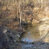 01-05-13 Arbor Hills Nature Preserve - IMGP3948.JPG