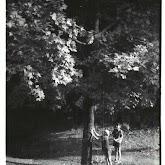 n008-034-1966-tabor-sikfokut.jpg