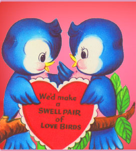 Love Birds Love Symbals Of Love To Love Only Ztamil