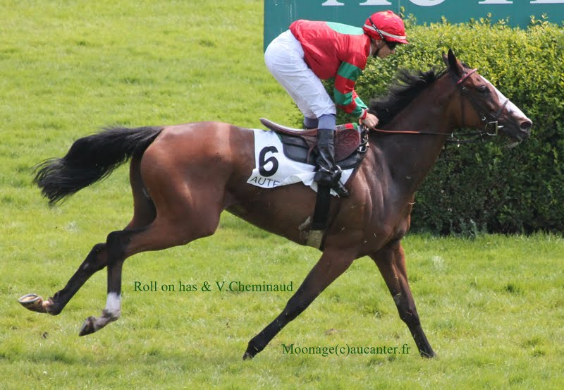 Photos Auteuil 8-06-2014  IMG_1646