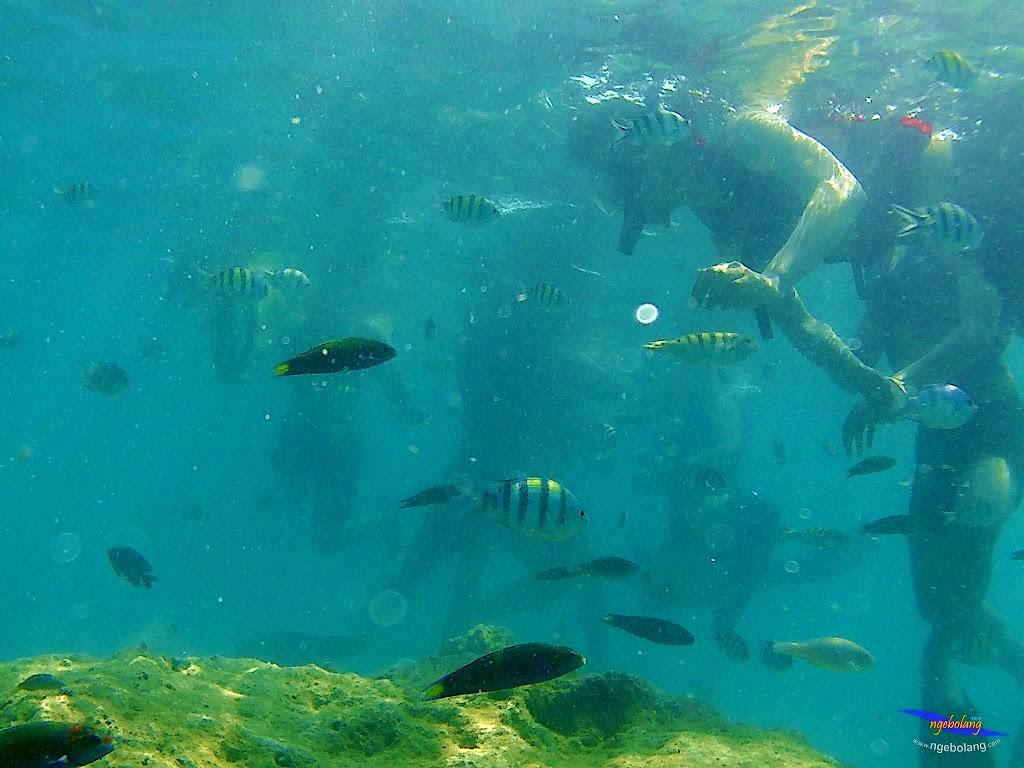 pulau harapan, 5-6 september 2015 skc 011